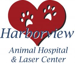 Harborview Animal Hospital