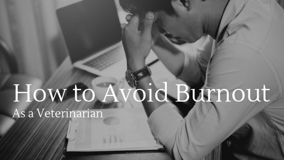 Avoiding Burnout as a Veterinarian in 2019