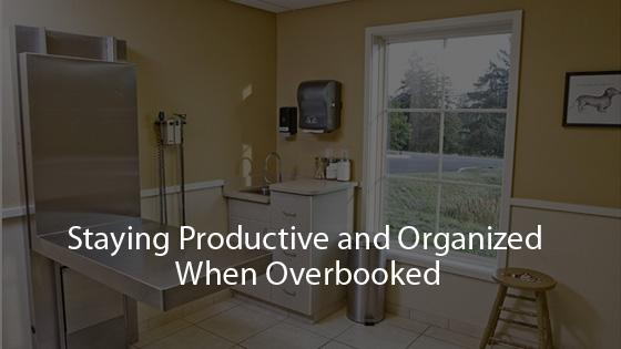 Staying Productive and Organized When Overbooked