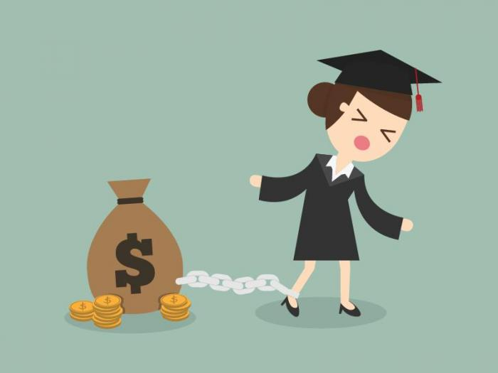 Do You Have Veterinary Student Loan Debt?