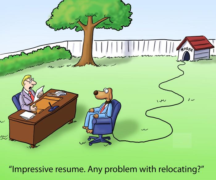 Want to Ace Your Veterinary Job Interview?